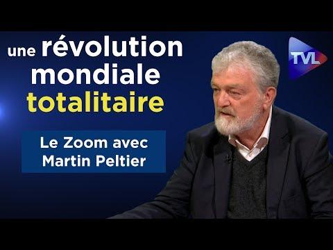 """""""Nous vivons une révolution mondiale totalitaire"""" - Le Zoom - Martin Peltier - TVL"""