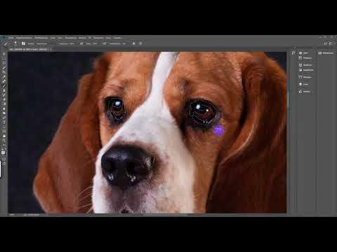 Усиление резкости на Фотошоп (уроки обработки Photoshop)