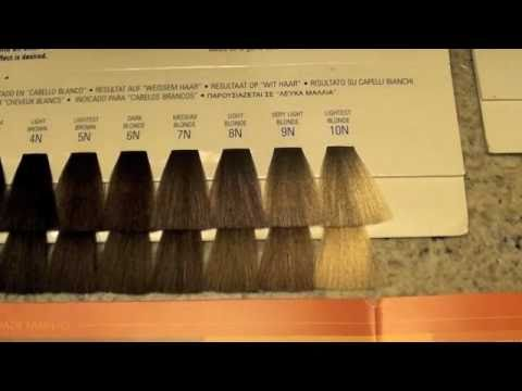 Cosmetology Haircoloring 3 Color Levels And Tones Youtube