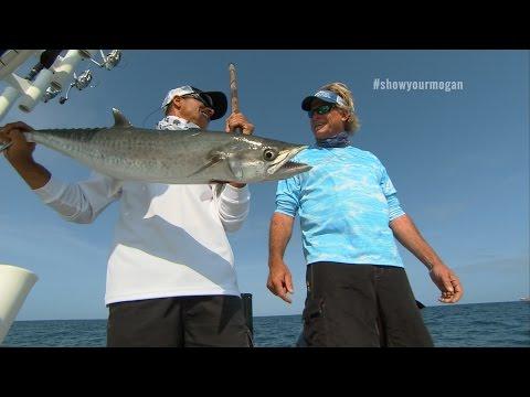 Offshore Trolling King Mackerel Fishing in St Pete Florida