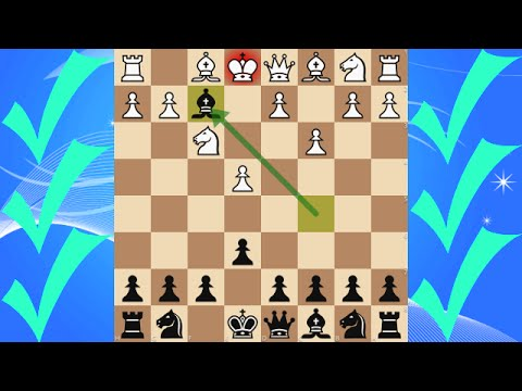 Three-check Speed Chess Tournament [205]