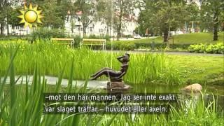 Hagamannens egna ord om misshandeln - Nyhetsmorgon (TV4)