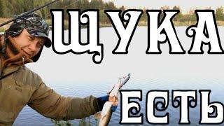 Рыбалка на спиннинг с берега на реке начало лета Итоги 1 часть