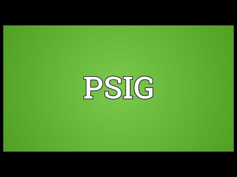 PSIG Meaning