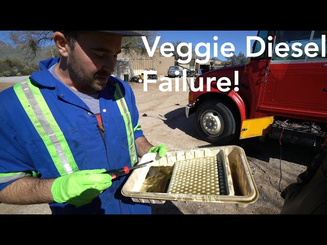 WASTE VEGETABLE OIL DIESEL PROBLEMS