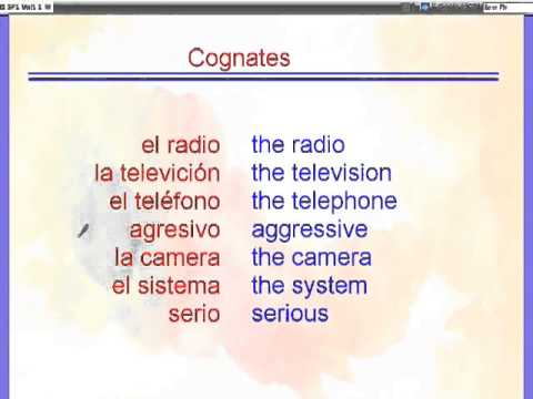 Cognates vs  False Cognates