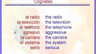 Cognates vs  False Cognates