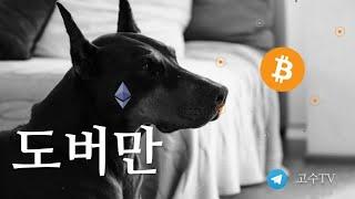 [블라방] 한국 거래소 폐쇄론 | 도지코인의 흥망 성쇄…
