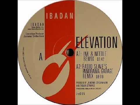 Jerome Sydenham & Tiger Stripes - Elevation (Ink & Needle Remix)