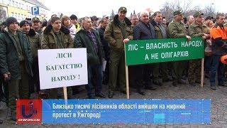 Близько тисячі лісівників області вийшли на мирний протест в Ужгороді