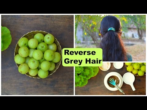 Reverse Grey Hair To Black With Amla Powder, Stimulate Hair Growth & Stop Hair Loss