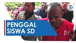 Fakta Pelaku Yang Penggal Kepala Korban Dan Sodomi Siswa SD Di Kalimantan Tengah, Ini Kronologinya
