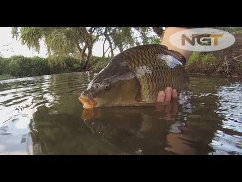Guide To Carp Fishing  Carp Care S1E6  Part 1