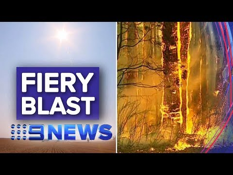 Sydney Smoke Haze Descends To Melbourne | Nine News Australia