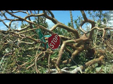 Noticias del Mundo La destruccion en Marco Island, el sitio por donde paso el... 12/09/17