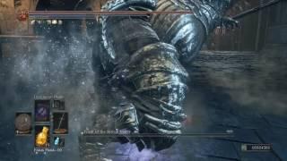 Dark Souls 3 - NG+100 Challenge Run Complete