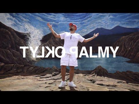 TYLKO PALMY / DISCO NOIR - & SIR MICH