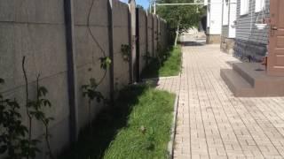 видео Система автоматического капельного полива газона: порядок устройства