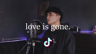 """love is gone"" (sad tiktok songs medley/mashup) heart attack, to the bone."