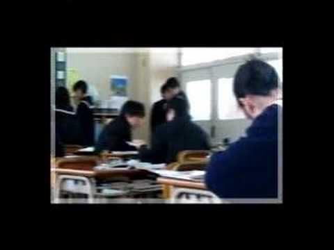 (2003) Statement of Agreement (Killing All the Flies / Mogwai) - JET Program