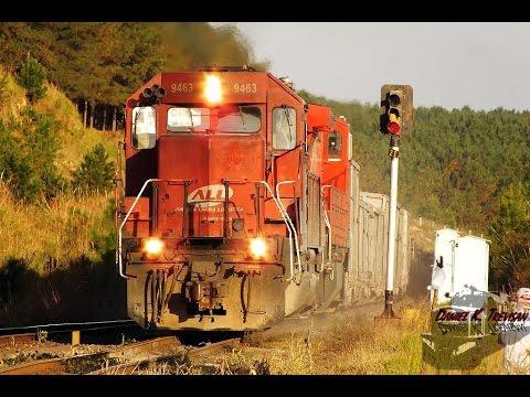 Brazilian Narrow Gauge Railway - América Latina Logística (ALL)