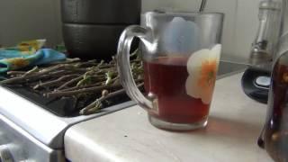 Целебный чай из почек Черной смородины / Польза и ред черной смородины