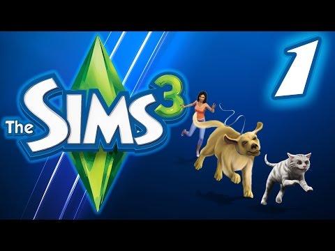 Если вы скачали Симс 3 с интернета,