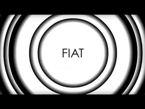 What is Fiat Money - Visual Explanation