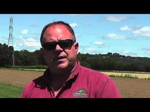 Turpin Farms - Ohio Native Turf Project