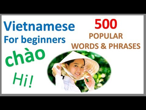 Vietnamese For Beginners   500 Popular Words & Phrases   Learn By Example