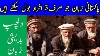 Only three pakistani can speak this extinct Badeshi language بدیشی زبان | Urdu Files
