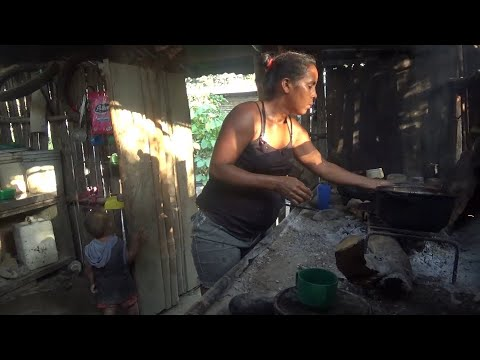 55 familias campesinas luchan en Canoita y Caño Amarillo, Estado Portuguesa, Venezuela