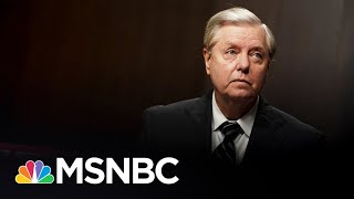 Trump Sycophant Lou Dobbs Attacks Lindsey Graham | The 11th Hour | MSNBC