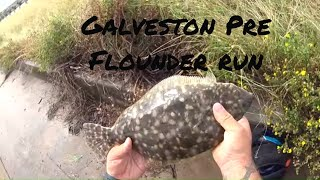 Galveston Flounder Fishing [ Flounder Run 2019 ]
