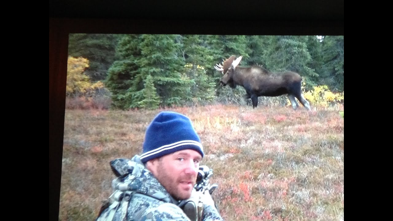 2015 alaska moose hunt diy 2 bulls in 3 days youtube solutioingenieria Gallery