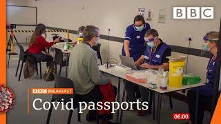 Coronavirus: Dozens of MPs criticise 'divisive' Covid passports @BBC News live 🔴 BBC