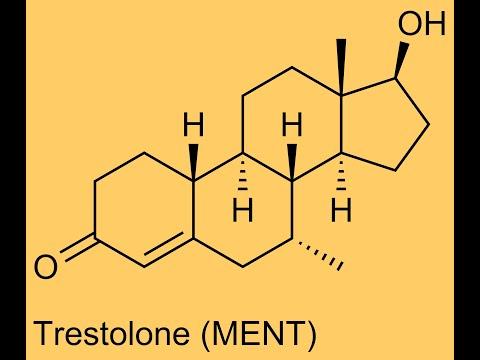 關於Trestolone(MENT)