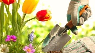 Productos especiales para la Jardinera en Casa - TvAgro por Juan Gonzalo Angel