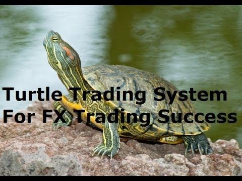 Forex factory turtle trading