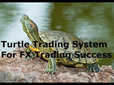 Richard elton forex trading