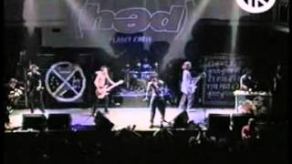Watch Hed PE Stevie video