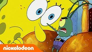 Губка Боб Квадратные Штаны   Чужие водоросли всегда зеленее   Полный эпизод   Nickelodeon Россия