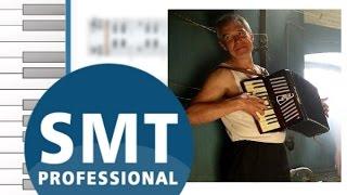 Как играть на аккордеоне Человек и кошка   How to play on accordion   SMT Pro