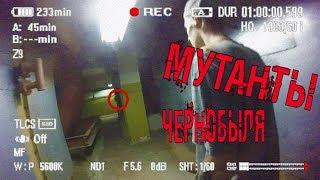 Мутанты Чернобыля. Ночь в библиотеке. Побег от охраны. Нашли секретные документы.