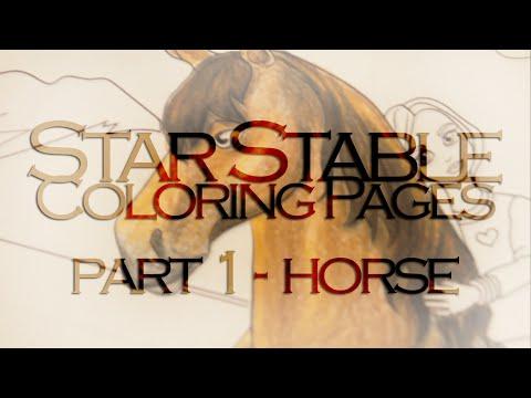 Morgan horse - Wikipedia | 360x480