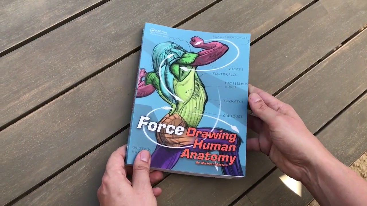 Force Anatomy Drawing Book Youtube