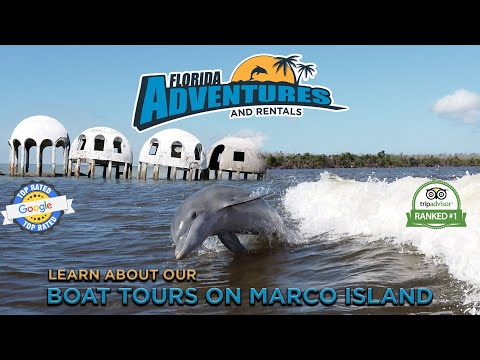 3 Hour Boat Eco Tour On Marco Island - Florida Adventures And Rentals