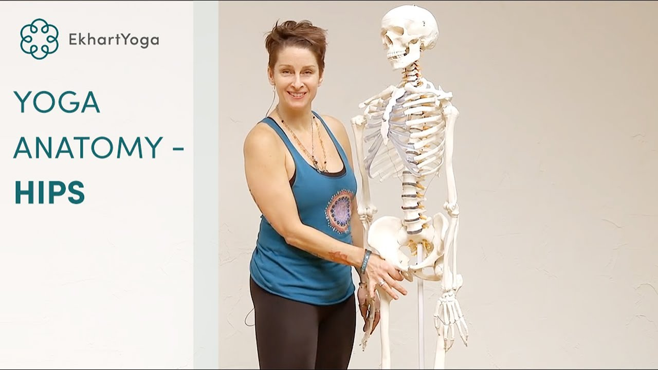 Yoga anatomy: The hip socket - YouTube