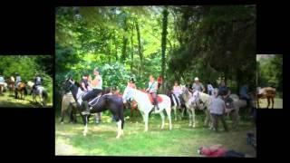 Un cheval, un GPS, l'étalon aiguille ! Université d'été du tourisme rural 2011, Aquitaine