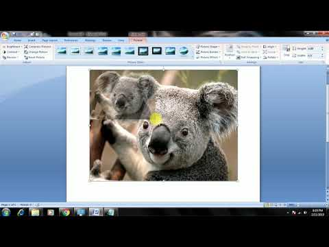 How To Insert Picture In  MS WORD Resize,Change, Position Of Object  In Hindi Step By Step Tutorial